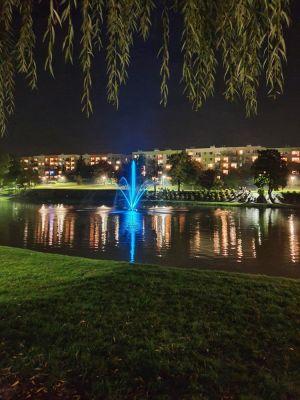 Zdjęcie przedstawia Staw Niemiecki nocą z oświetloną fontanną tle Fot. K. Chmura