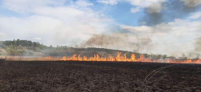 APEL w sprawie zaniechania wypalania traw i pozostałości roślinnych !!!