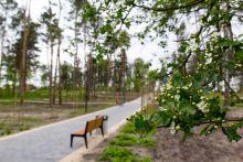 """Zagospodarowanie parku tzw. """"Małpi Gaj"""""""
