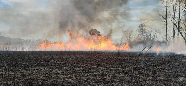 APEL w sprawie zaniechania wypalania traw i pozostałości roślinnych!!!